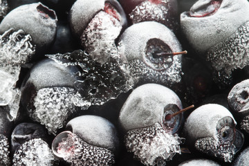 Frozen bluberries