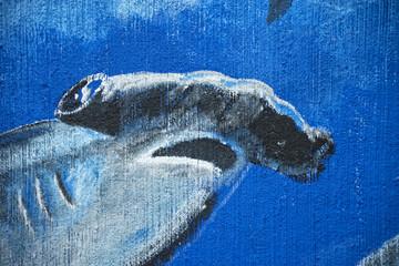 hammerhead shark murales