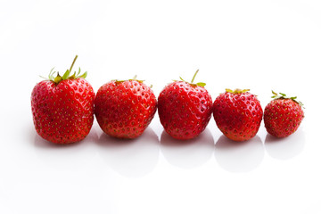 Strawberries arranged in a row size descending. White background
