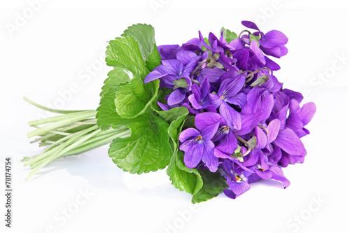 Bouquet de violettes photo libre de droits sur la banque d 39 images image 78174754 - Image fleur violette gratuite ...