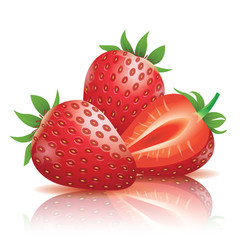 Strawberry, Realistic vector illustration