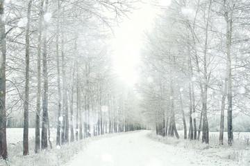 Spoed Foto op Canvas Wit Snowy winter road in a field