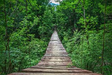 Obraz Suspension bridge - fototapety do salonu