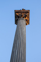 Column with Corinthian Capital in Sunset
