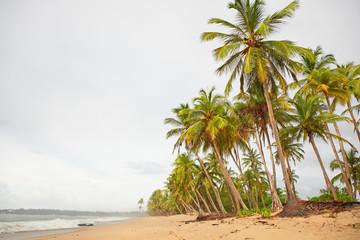 Rainy day on a tropical island