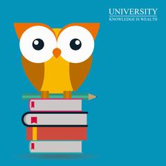 University design, vector illustration.