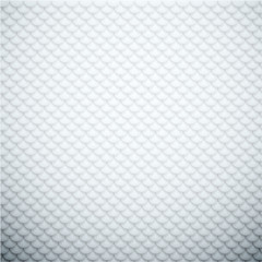 Squama textured abstract background.