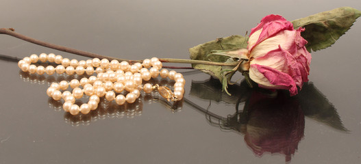 Dried Rose with Pearls