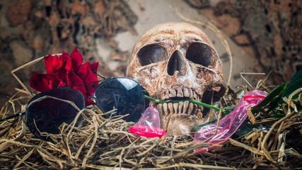 Still life with human skull with red rose