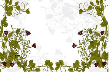 roses en vert