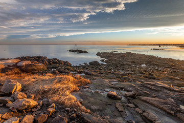 Rocky Beach With Golden Grass At Sunset