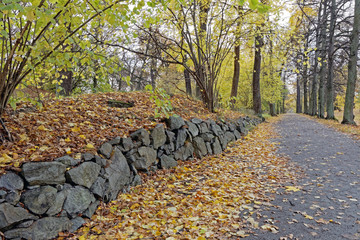 Stone wall in the park