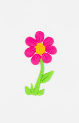 Flower from children bright plasticine.