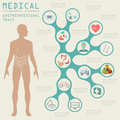 Medical and healthcare infographic, gastrointestinal tract infog