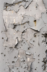 texture of old white paint on the wall