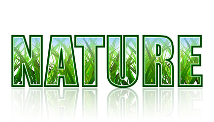 Nature title. Clean background with green grass.