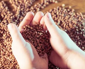 buckwheat in open child palms