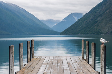 Wall Murals New Zealand Nelson Lakes National Park New Zealand