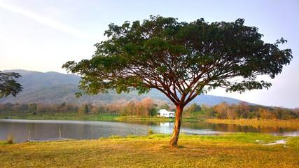 The beautiful lake in Maehae farm at chiangmai thailand