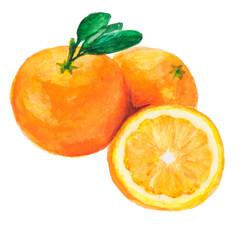 the tree orange isolated on the white background