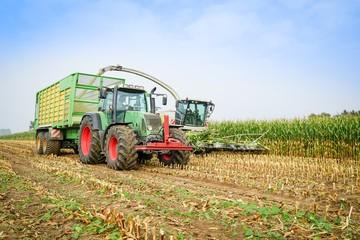 Wall Mural - Maisernte,Maishäcksler in Aktion,Erntewagen mit Traktor