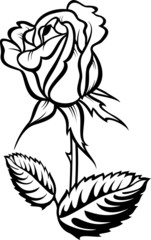 Rose silhouette with stalk and leaves. Vector illustration.