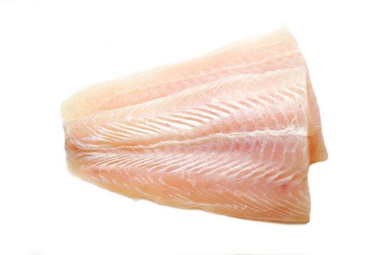 Raw Mild White Fish Isolated on White