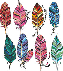 Big set of colorful feathers