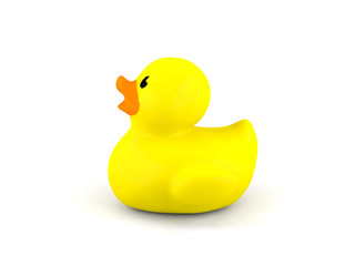 Yellow rubber duck isolated
