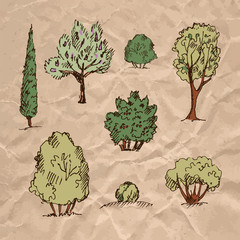 Collection of trees on crumpled kraft paper texture.