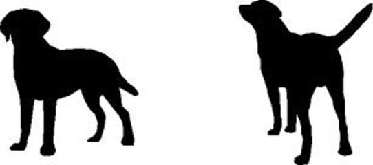 2 Labrador Retriever, vector silhouette