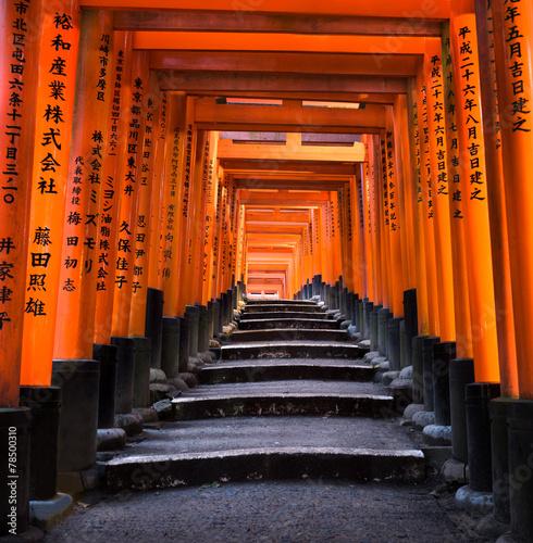 Wall mural Fushimi Inari Schrein in Kyoto
