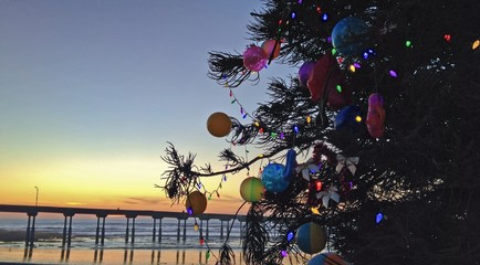 Christmas Tree on Beach, Ocean Beach, San Diego, California, USA