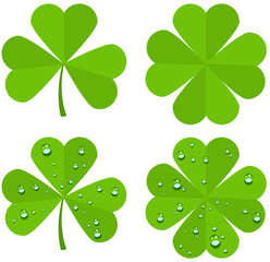 Set clover leaves isolated on white background