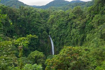 cascade et forêt tropicale - Costa Rica