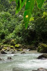 rivière et jungle - Costa Rica