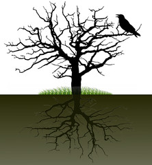 Vector-silhouette of a tree with the raven and the root