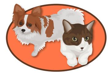 犬と猫 パピヨンと猫mix