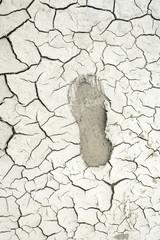 Crack soil on dry season,