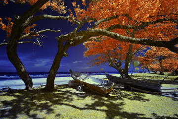 Infrared edited image of fisherman boat and trees