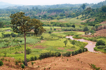 African Landscape with river