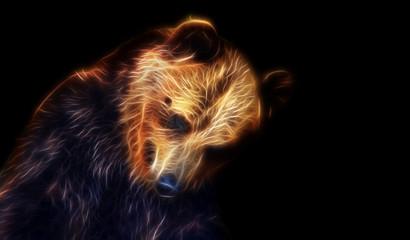 Fantasy drawing of a bear