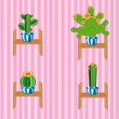 Cactuses on regiment