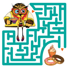 Funny labyrinth with owl