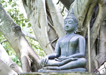 Buddha statue under the big green tree, Thailand