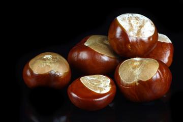 freshly fallen chestnuts(Aesculus hippocastanum)