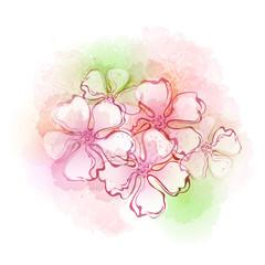 Watercolor flowers. Vector illustration