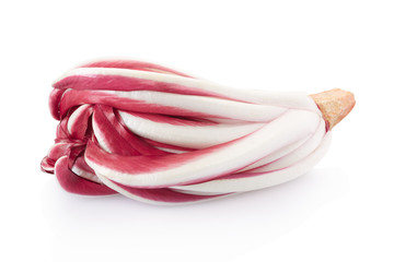 Radicchio, red Treviso chicory isolated on white, clipping path