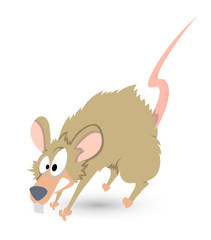 Funny Rat Vector