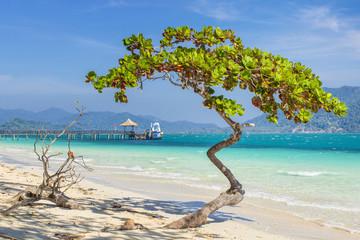 beach on the island